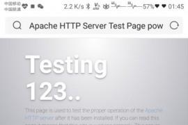 宝塔面板下的网站打开出现testing123怎么解决
