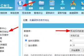 帝国CMS刷新所有信息页地址无效的终极处理方法