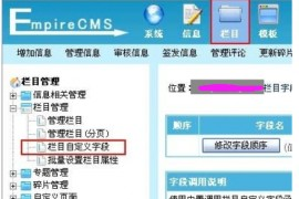 帝国cms仿站教程:帝国CMS栏目自定义字段说明教程