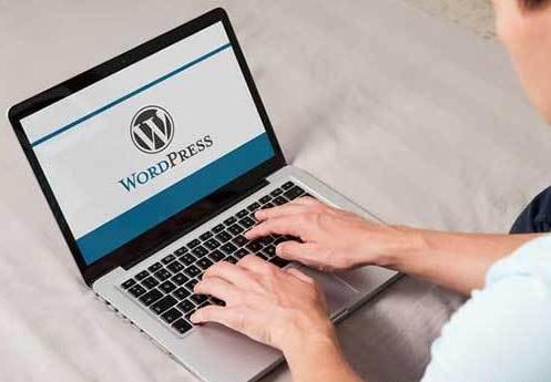 wordpress仿站教程之WordPress维护模式的三种设置方法 wordpress仿站教程 WordPress维护模式 设置方法 第1张