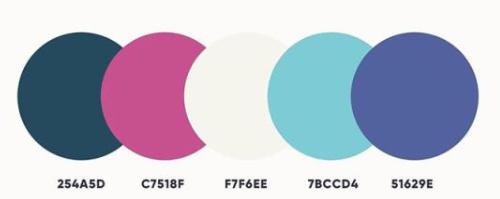 好看的五色配色方案 第17张